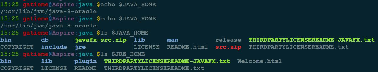 Ubuntu安装JDK详解 Ubuntu 第3张-泥人传说