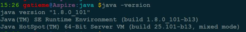 Ubuntu安装JDK详解 Ubuntu 第4张-泥人传说