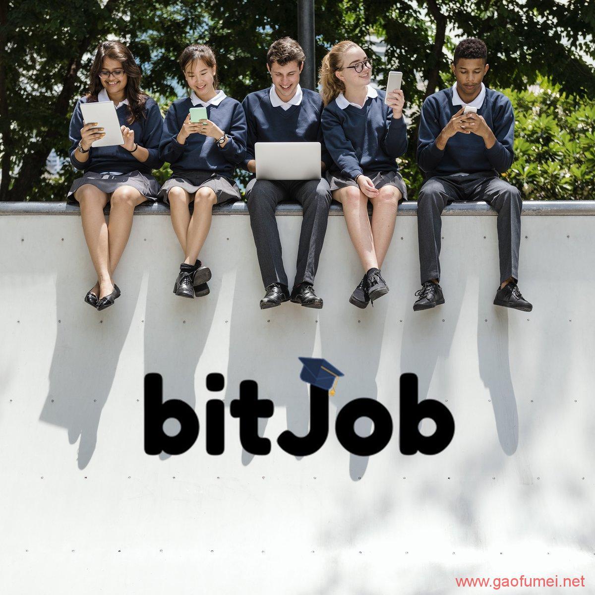 BitJob获得200万美元启动资金针对大学生的区块链就业服务平台 区块链 第1张-泥人传说