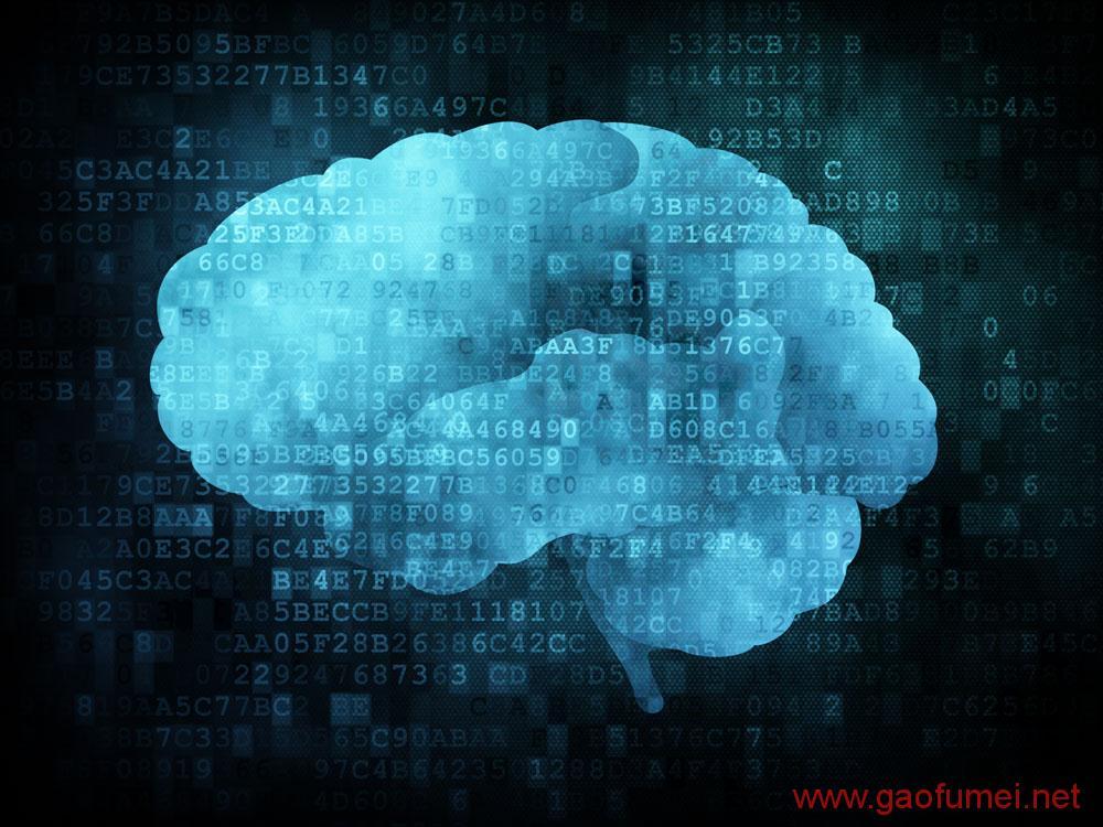 DARPA研发大脑神经刺激设备把猕猴的学习速度提高了40% 神经科学 第2张-泥人传说