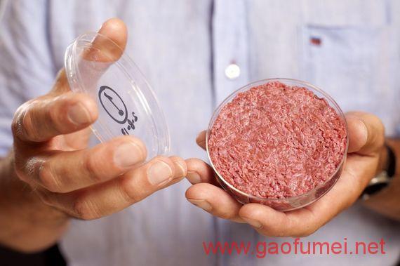 Hampton Creek收购人造肉原始专利预计2018年上市人造肉 存储技术 第2张-泥人传说