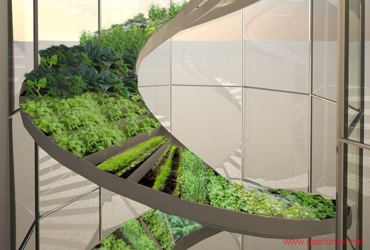 Plantagon在WEF发布植物大厦设计方案上海或将兴建城市农场 农业科技 第5张-泥人传说