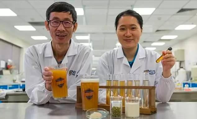 新加坡国立大学研制出益生菌啤酒每100毫升就富含10亿活体益生菌 食品科技 第1张-泥人传说