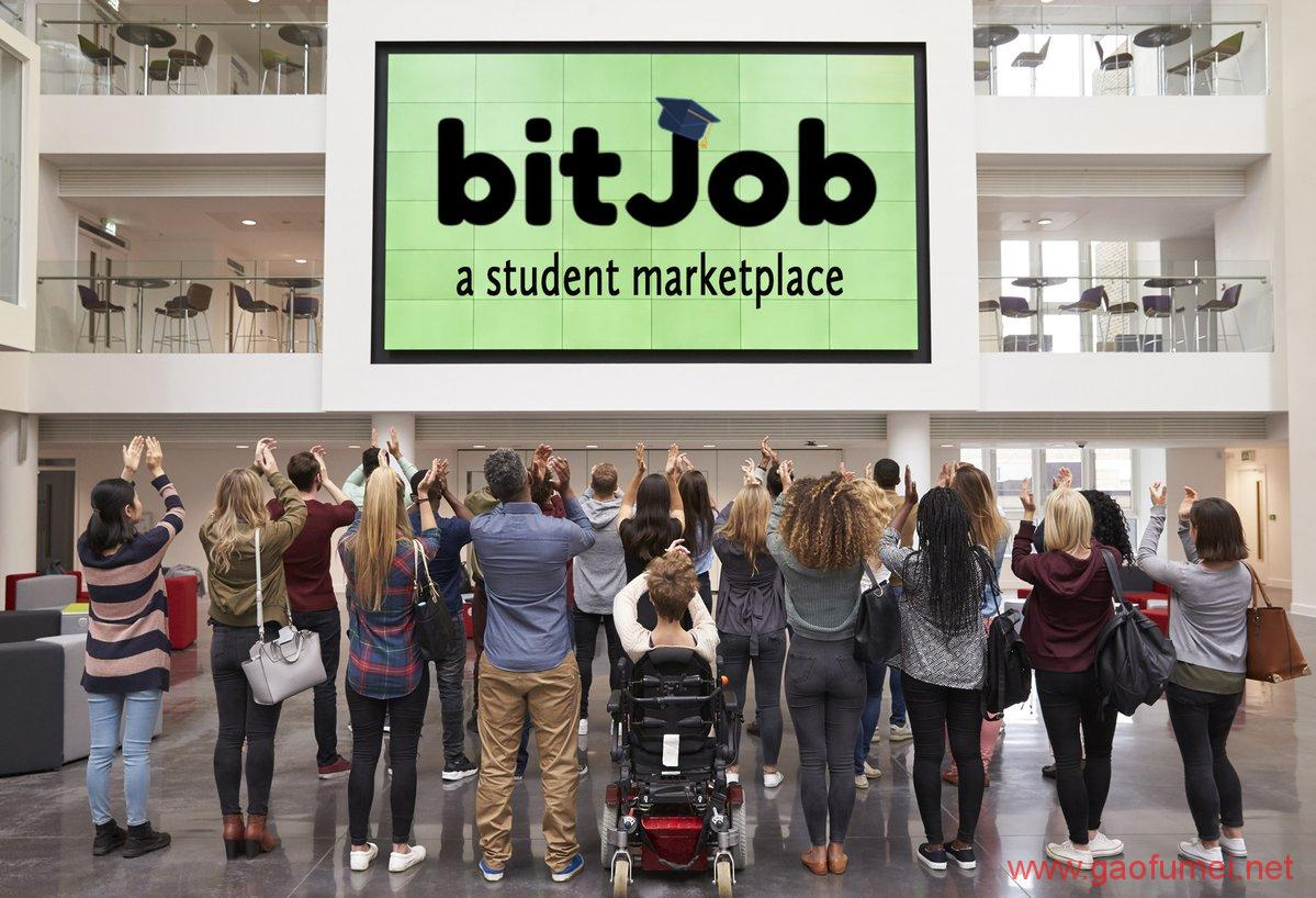 BitJob获得200万美元启动资金针对大学生的区块链就业服务平台 区块链 第4张-泥人传说