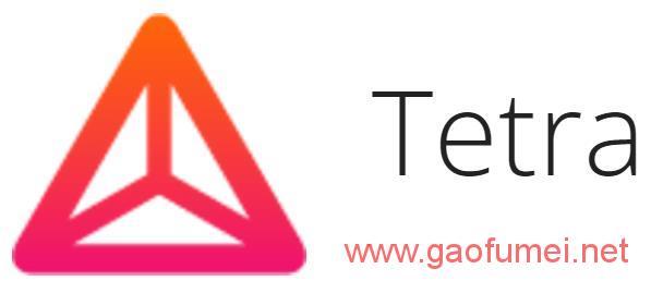 语音转录技术潜力巨大Tetra获得种子轮融资 语音识别 第1张-泥人传说