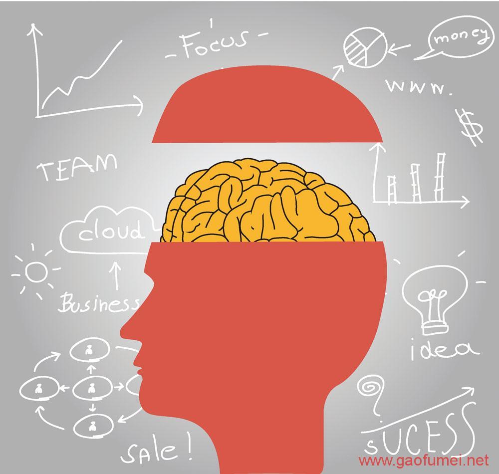 DARPA研发大脑神经刺激设备把猕猴的学习速度提高了40% 神经科学 第3张-泥人传说