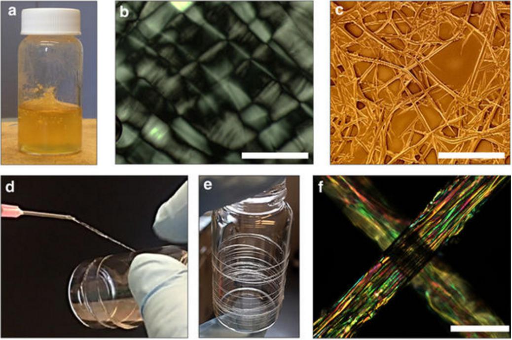 麻省理工学院改造蚕丝强度可匹敌蜘蛛丝