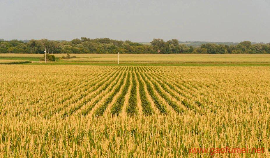 Farmobile完成1810万美元B轮融资为农民提供数据服务 云服务 第4张-泥人传说