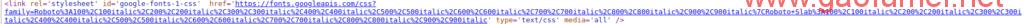wordpress清除头部特殊的谷歌字体fonts.googleapis.com样式引用 wordpress程序使用技巧分享 第1张-泥人传说