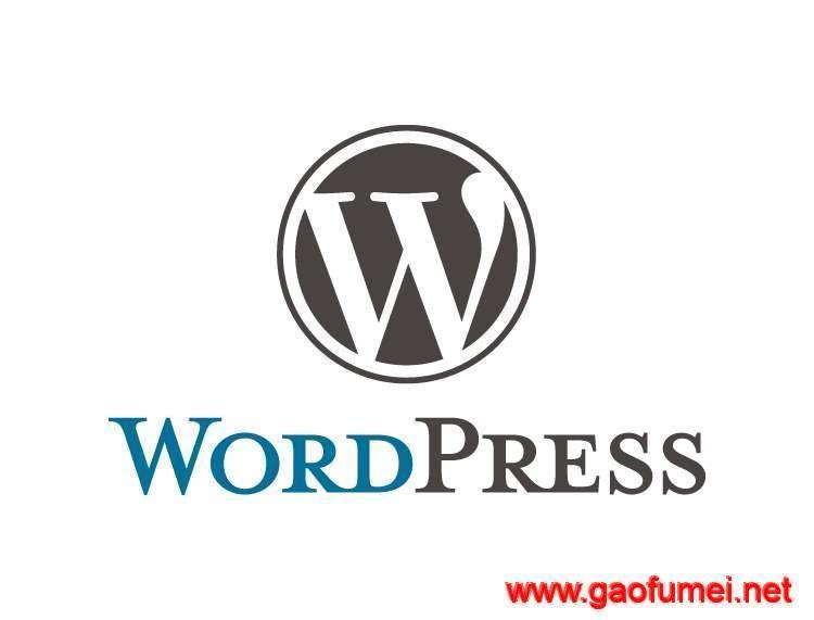 wordpress切换为中文语言的通用方法 wordpress程序使用技巧分享 第1张-泥人传说